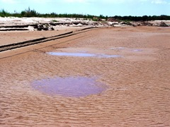 Quicksand dominates the watercourse of the Little Colorado River at Homolovi State Park, near Winslow, Arizona - Click for larger image (http://jamesmcgillis.com)