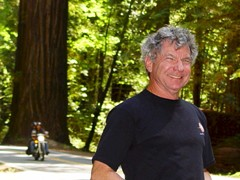 Author, Jim McGillis awaits the roar of a motorcycle in the Redwood Forest - Click for larger image (http://jamesmcgillis.com)