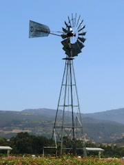 An old Aermotor windmill stands at Sullenger Vineyards, across California Highway 29 from the Robert Mondavi Winery in Oakville, Napa Valley - Click for larger image (http://jamesmcgillis.com)