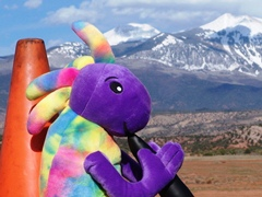 Plush Kokopelli and Coney the Traffic Cone, Behind the Rocks, with the La Sal Range in the background - Click for larger image (http://jamesmcgillis.com)