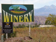Spanish Valley Winery, with the La Sal Mountains, upper right - Click for larger image (http://jamesmcgillis.com)