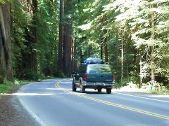 An SUV speeds through the Avenue of the Giants - Click for larger image (http://jamesmcgillis.com)