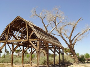 Unfinished antique pole barn and dead cottonwood trees in Downtown Mesquite, Nevada - Click for larger Iimage (http://jamesmcgillis.com)