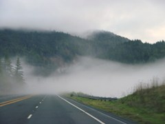 As the road descends, fog envelopes my car - Click for larger image (http://jamesmcgillis.com)