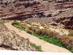 The Virgin River Gorge, Arizona, as seen in summer flood on July 26, 2013 - Click for larger image (http://jamesmcgillis.com)