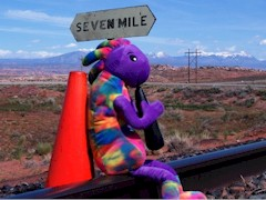 Plush Kokopelli and Coney the Traffic Cone, looking for the missing Moab Burro at Seven Mile - Click for larger image (https://jamesmcgillis.com)