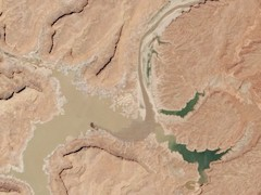 In this aerial view of the upper reaches of Lake Powell, receding water exposes mudflats where once was lake water - Click for larger image (http://jamesmcgillis.com)