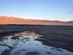 Salt Creek in Death Valley is home to the rare Desert Pupfish - Click for larger image (https://jamesmcgillis.com)