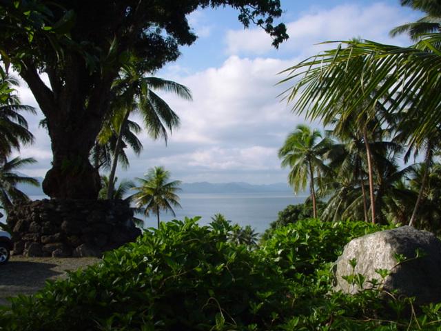 The Big Tree at Lomalagi Resort, overlooking Natewa Bay, Vanua Levu, Fiji - Click for larger image (https://jamesmcgillis.com)