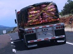 Semi-truck and trailer loaded with California onions, heading east on Interstate I-40 near Ash Fork, Arizona - Click for larger image (http://jamesmcgillis.com)