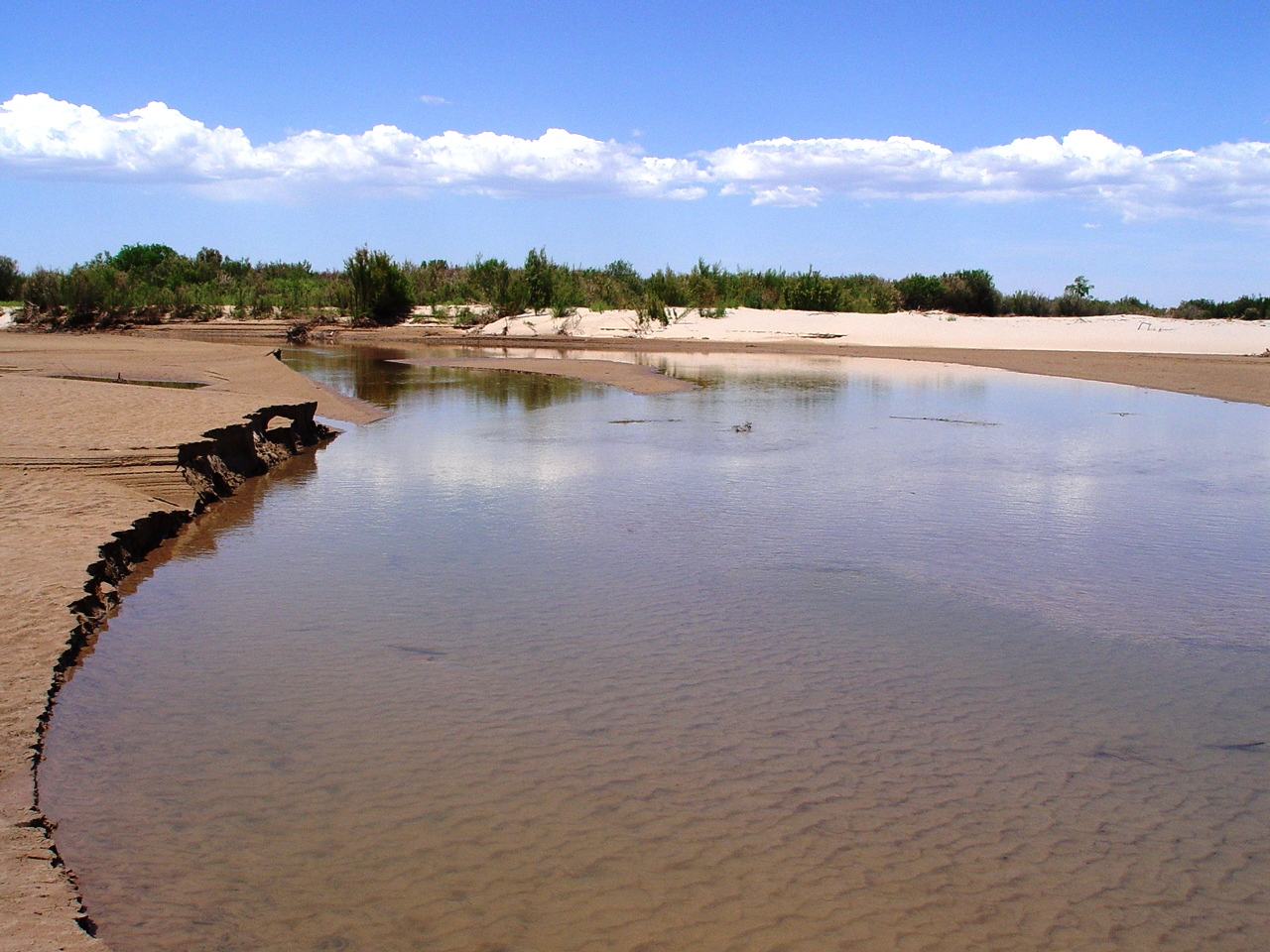 Little Colorado River receding, at Homolovi Ruins State Park, Arizona (http://jamesmcgillis.com)