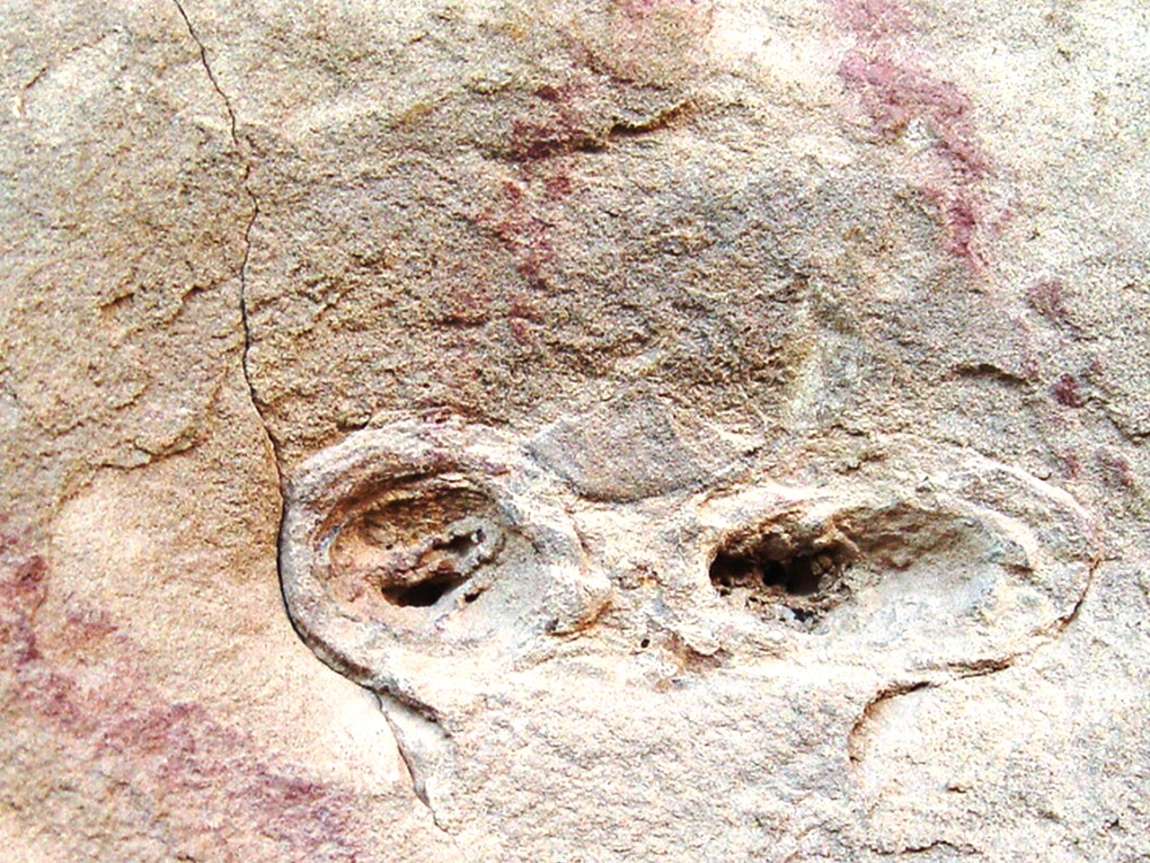 A countenance appears on the canyon wall at Gallo Campground, Chaco Canyon, New Mexico - Click for larger image (http://jamesmcgillis.com)