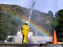 As Coney the Traffic Cone stands by, LACoFD Firefighter Darney trains his powerful water hose across the Hollywood Bowl parking lot, Los Angeles, California - Click for larger image (http://jamesmcgillis.com)