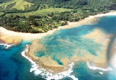 Coral reefs on the North Shore of Kaua'i, near Princeville in 1988 - Click for larger image (http://jamesmcgillis.com)