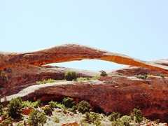 Digital image of Landscape Arch, showing unweathered stone on lower-right, which was the result of a 1991 rock fall - Click for larger image (http://jamesmcgillis.com)