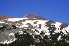 Mt. Dana in late June 2017, with snow-pack still clinging - Click for July 2016 image of the same peak, with no snow-pack (https://jamesmcgillis.com)