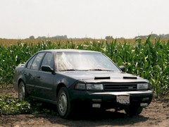 My 1991 Nissan Maxima in parked in a corn field near Floyd, Iowa in 2002 - Click for larger image (htp://jamesmcgillis.com)