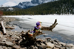 Plush Kokopelli discovers that ice is melting early on Lake Mary in April 2013 - Click for larger image (http://jamesmcgillis.com)