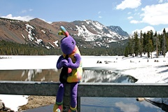 As Plush Kokopelli observes, the ice melts before his eyes on Lake Mary near Mammoth Mountain, California in April 2013 - Click for larger image (https://jamesmcgillis.com)